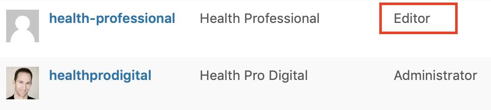 WordPress Website - Editor Privileges